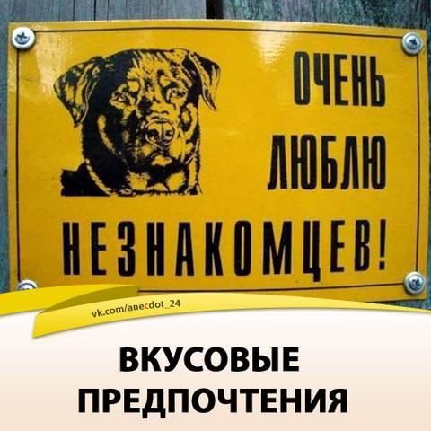 http://s7.uploads.ru/t/WiEpX.jpg