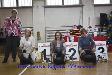 http://s7.uploads.ru/t/WjfMp.jpg