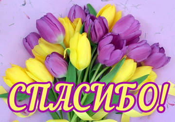 http://s7.uploads.ru/t/XW17D.jpg