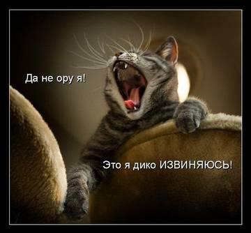 http://s7.uploads.ru/t/XeQHv.jpg