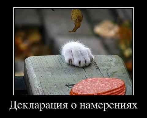 http://s7.uploads.ru/t/YDPBu.jpg