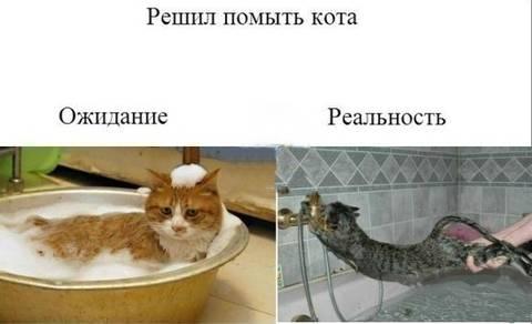 http://s7.uploads.ru/t/YMBEF.jpg