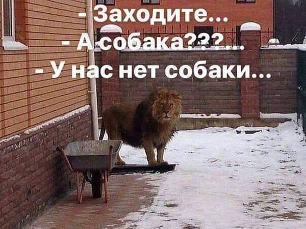 http://s7.uploads.ru/t/YNc6J.jpg