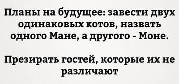 http://s7.uploads.ru/t/Yidqa.jpg