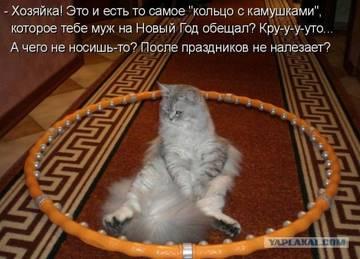 http://s7.uploads.ru/t/YjSzu.jpg