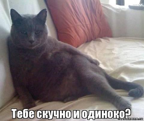 http://s7.uploads.ru/t/Z2gq9.jpg