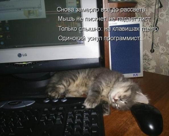 http://s7.uploads.ru/t/ZFEP9.jpg