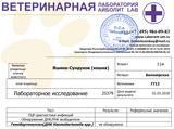 http://s7.uploads.ru/t/ZuVpR.png