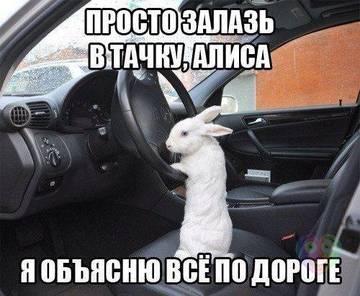 http://s7.uploads.ru/t/aIFMj.jpg