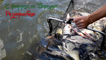 http://s7.uploads.ru/t/aY9qw.jpg
