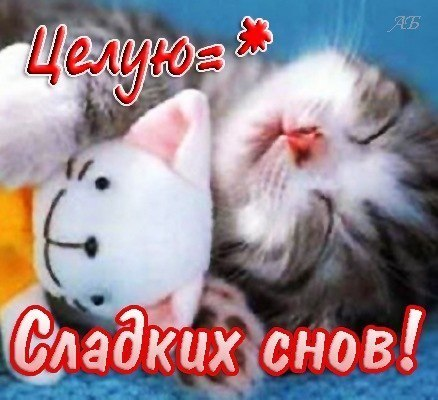 http://s7.uploads.ru/t/aYyLB.jpg