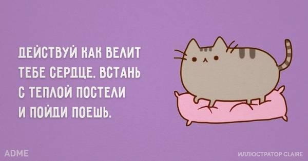 http://s7.uploads.ru/t/asAyn.jpg