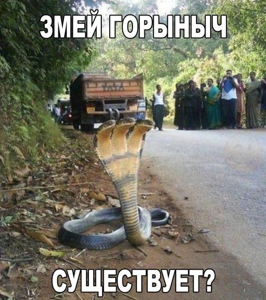 http://s7.uploads.ru/t/az2nt.jpg