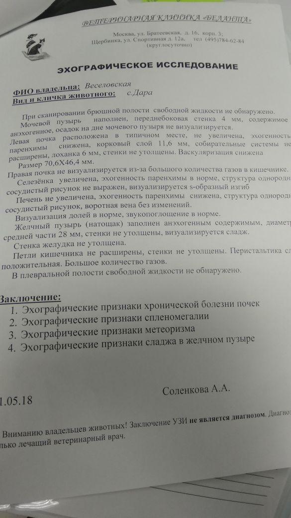 http://s7.uploads.ru/t/b4edS.jpg