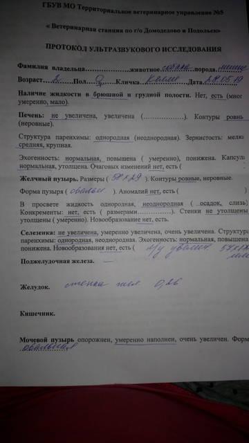 http://s7.uploads.ru/t/bErzx.jpg