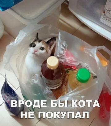 http://s7.uploads.ru/t/brXhR.jpg