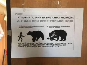 http://s7.uploads.ru/t/bt1uq.jpg