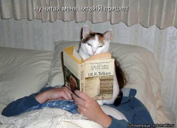 http://s7.uploads.ru/t/c47sY.jpg