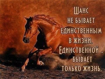http://s7.uploads.ru/t/cMpv1.jpg