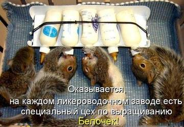 http://s7.uploads.ru/t/cgKLa.jpg