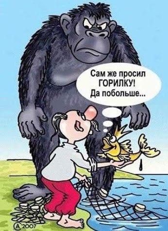 http://s7.uploads.ru/t/ciB1d.jpg