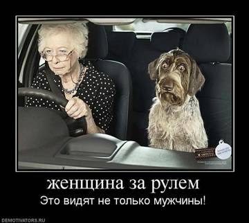 http://s7.uploads.ru/t/d6yLF.jpg