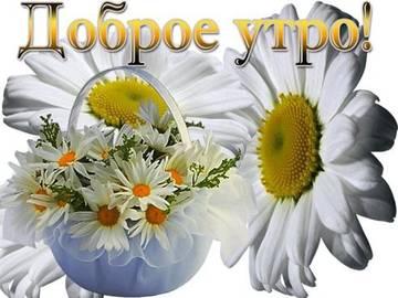 http://s7.uploads.ru/t/d74Ng.jpg