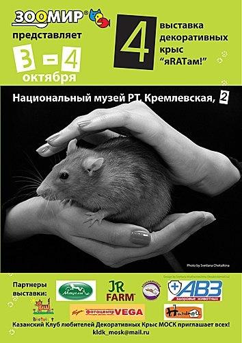 http://s7.uploads.ru/t/dPhlO.jpg