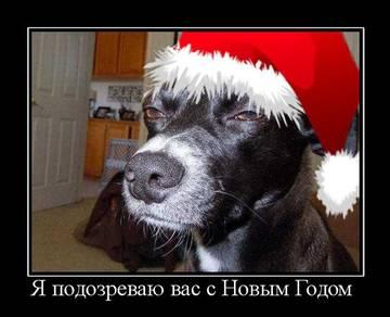 http://s7.uploads.ru/t/dnB2i.jpg