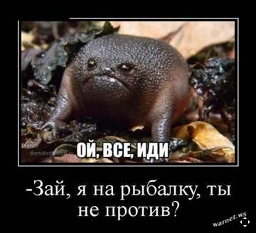 http://s7.uploads.ru/t/eLl0d.jpg