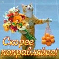 http://s7.uploads.ru/t/ea6QU.jpg
