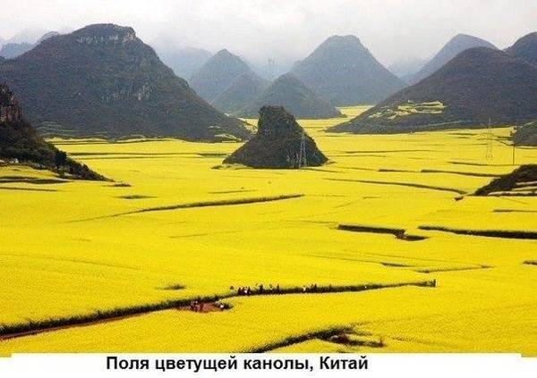 http://s7.uploads.ru/t/ecHEA.jpg