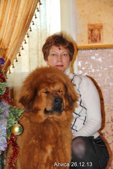 http://s7.uploads.ru/t/fAlb0.jpg