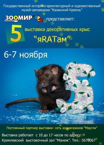 http://s7.uploads.ru/t/gYVGr.jpg