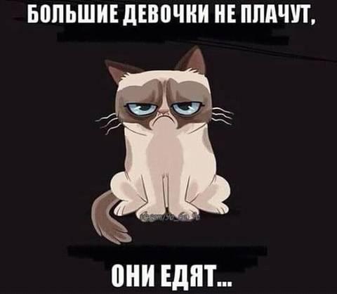 http://s7.uploads.ru/t/h5HbL.jpg
