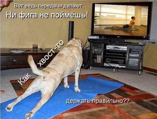 http://s7.uploads.ru/t/h6yvV.jpg