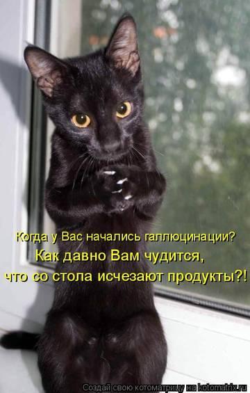 http://s7.uploads.ru/t/hGv8C.jpg