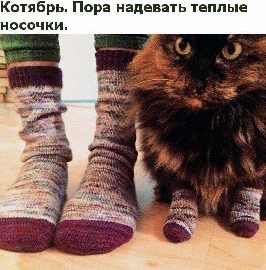 http://s7.uploads.ru/t/hLzG8.jpg