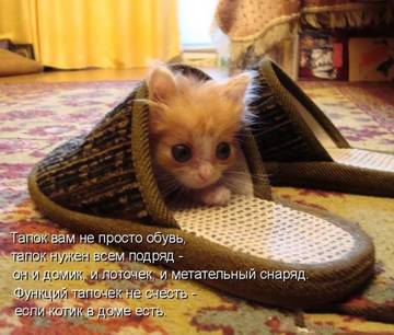 http://s7.uploads.ru/t/i8OTC.jpg