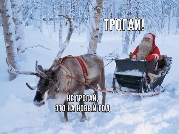 http://s7.uploads.ru/t/iBxk7.jpg