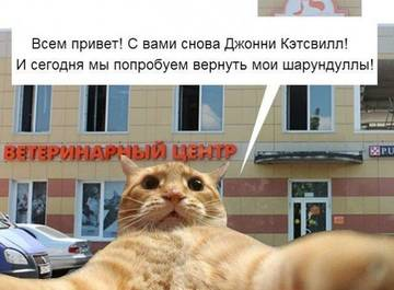 http://s7.uploads.ru/t/iHZ0v.jpg