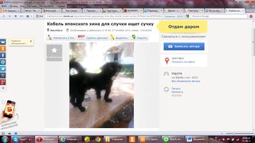 http://s7.uploads.ru/t/iMsQ4.png