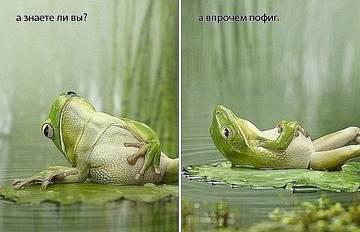 http://s7.uploads.ru/t/ifF3B.jpg