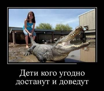 http://s7.uploads.ru/t/inwca.jpg