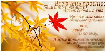 http://s7.uploads.ru/t/izJ61.jpg