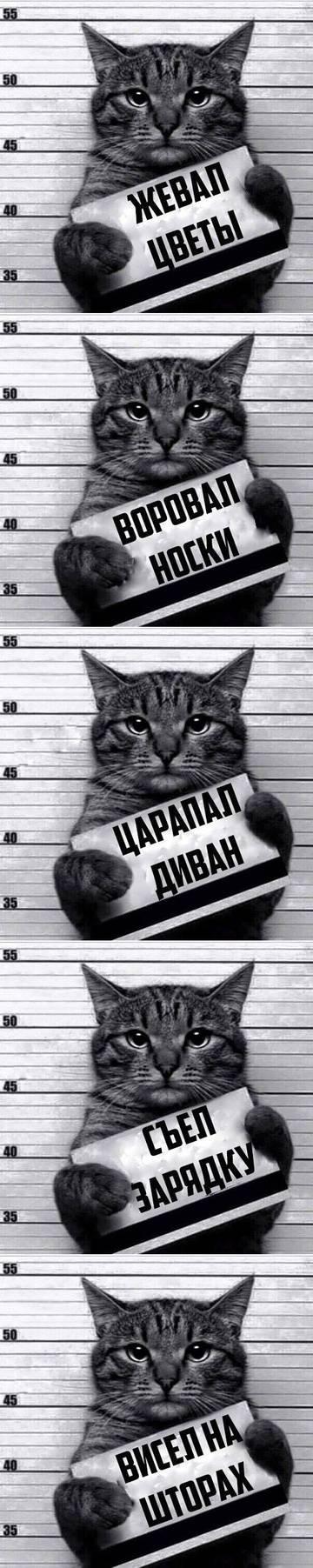 http://s7.uploads.ru/t/jMfxa.jpg