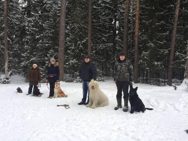http://s7.uploads.ru/t/jkiX8.jpg