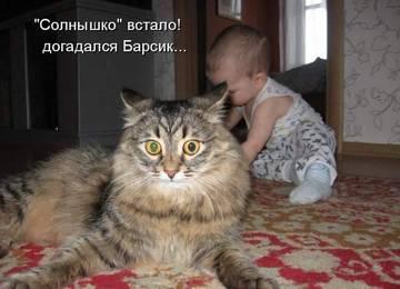 http://s7.uploads.ru/t/k4nuN.jpg