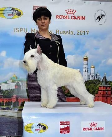 http://s7.uploads.ru/t/kDfge.jpg