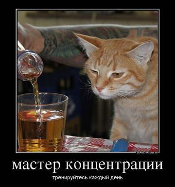 http://s7.uploads.ru/t/kH2pV.jpg